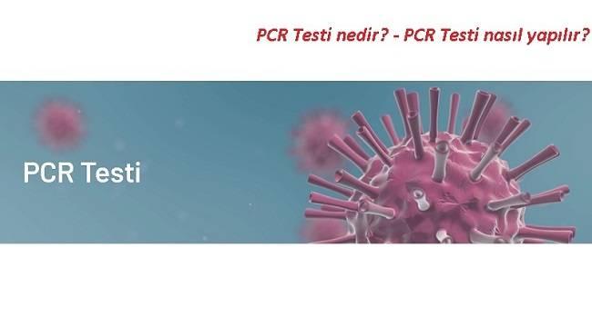 PCR Testi nedir? ve PCR Testi nasıl yapılır?